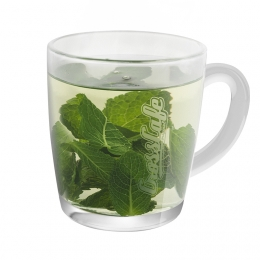 Tea from Fresh Mint